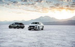Picture pair, Quattro, 2018, crossover, S-Line, 55 TFSI, Audi Q8