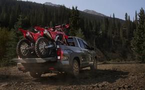 Picture motorcycles, Honda, body, rear view, pickup, 2020, Ridgeline, 2021