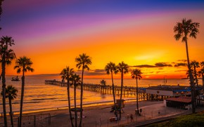 Picture sea, beach, the sky, sunset, palm trees, coast, horizon, CA, pierce, USA, San Clemente Beach