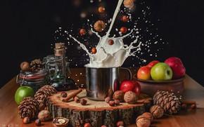 Picture apples, milk, mug, nuts, still life, bumps, the bryzkami, Ольга Шацкая