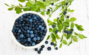 Picture summer, table, bowl, blueberries, Olena Rudo