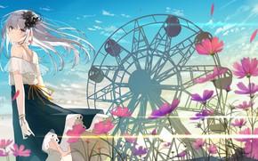Picture girl, Ferris wheel, kosmeya