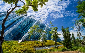 Picture greens, the sky, grass, the sun, clouds, trees, design, design, the building, construction, garden, Singapore, …