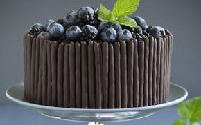 Picture blueberries, cake, vase, dessert