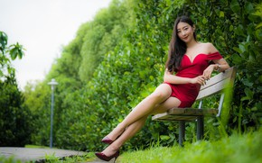 Picture girl, smile, Park, hair, dress, legs, Asian, bench