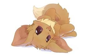 Picture cutie, Pokemon, Pokemon