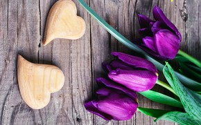 Picture love, heart, purple, tulips, love, with, flowers, romantic, hearts, tulips, purple