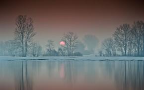 Picture winter, trees, lake, sunrise, dawn, morning