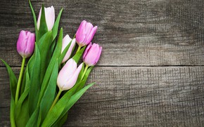 Picture flowers, bouquet, colorful, tulips, wood, pink, flowers, tulips, spring