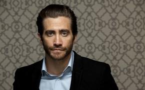 Picture look, male, shirt, Jake Gyllenhaal