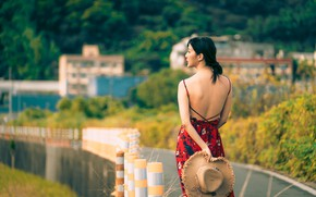 Picture girl, back, hat, dress, Asian