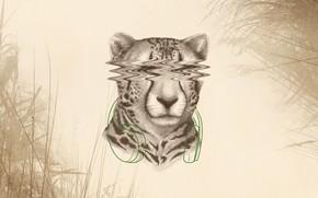 Picture Instinct, Music, Monstercat, Cover, Vol.3
