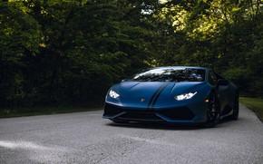 Picture Lamborghini, Road, Edition, Forest, Huracan, Avio