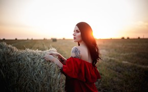 Picture the sun, Girl, stack, dress, hay, shoulders, Anna Kovaleva