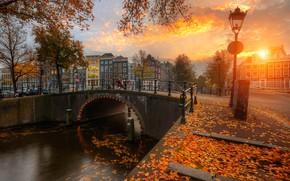 Picture autumn, sunset, bridge, the city, foliage, home, Amsterdam, channel, Netherlands, promenade, Holland, Ed Gordeev, Gordeev …