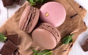 Picture chocolate, dessert, macaron, Myfoodie