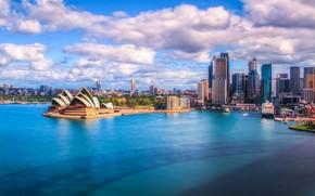 Picture water, building, skyscrapers, Australia, Sydney, Opera