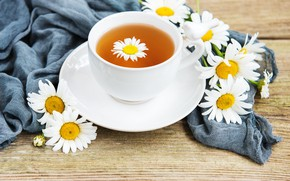 Picture Daisy, Cup, tea fragrant