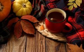 Wallpaper autumn, leaves, background, Board, colorful, pumpkin, maple, wood, background, autumn, leaves, cup, autumn, tea, pumpkin, ...