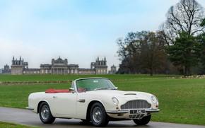 Picture grass, Aston Martin, convertible, 1970, 2018, Heritage EV Concept, DB6 Mark II Volante