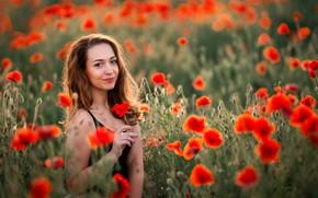 Picture field, look, girl, nature, Maki, brown hair, bokeh, Yulia Larina