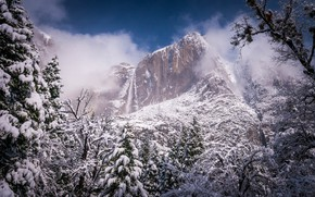 Picture winter, forest, landscape, nature, fog, rock, mountain, beauty