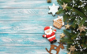 Picture holiday, tree, new year, Christmas, branch, cookies, figures, composition, Olena Rudo