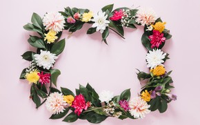 Picture flowers, frame, colorful, chrysanthemum, flowers, frame, floral