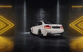 Picture BMW, Mulgari, M240i, 2019, BMW M2, ICON03