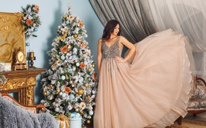 Picture girl, pose, room, tree, dress, New year