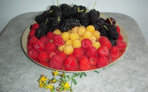 Picture raspberry, table, berry, plate, red, yellow, BlackBerry, Cernea