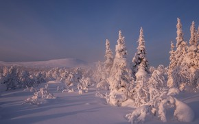Picture winter, the sky, snow, trees, ate, the snow, Russia, Main Ural ridge