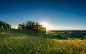 Picture field, grass, the sun, rays, Switzerland