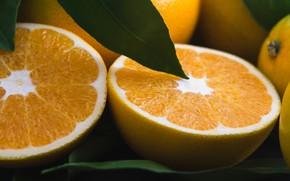 Picture macro, oranges, halves