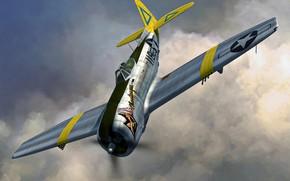 Picture USA, USAF, Republic, P-47N, P-47 Thunderbolt, 463rd FS, 507th FG