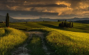 Picture field, sunset, trail, the evening, plain