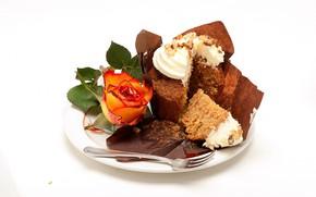 Picture white, background, rose, cream, dessert, cakes, cupcakes, Natalia Klenova
