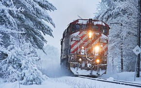 Picture winter, forest, snow, trees, train, locomotive