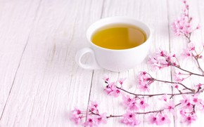 Picture branches, spring, Sakura, flowering, wood, pink, blossom, cup, sakura, cherry, spring, tea, bloom, Cup of ...