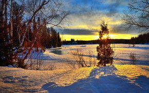 Picture winter, forest, trees, landscape, sunset, nature, lake, Canada, shadows, QC, Alain Audet