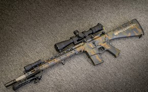 Picture weapons, rifle, weapon, custom, ar-15, assault rifle, assault Rifle, ar-15