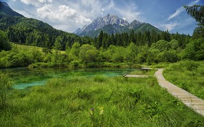 Picture summer, grass, mountains, lake, Slovenia