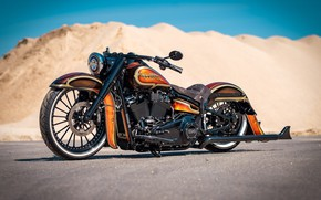 Picture Harley Davidson, Harley-Davidson, Custom, Motorcycle, Thunderbike, By Thunderbike, Heavy Road Bike, THE HEAD