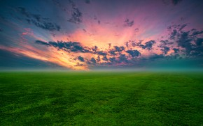 Picture grass, meadow, dawn