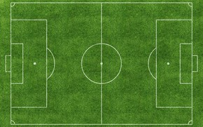 Picture colors, grass, lines, soccer field