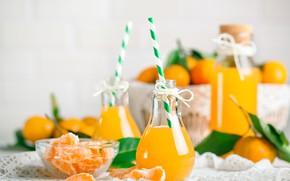 Picture juice, citrus, fresh, lemonade, tangerines, bottle