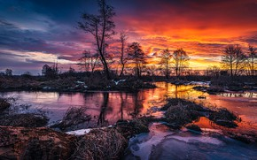 Picture the sky, trees, sunset, nature, river, spring, Tomczak Michael