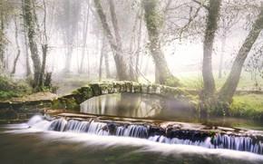 Picture bridge, fog, river