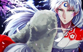 Picture look, the demon, Inuyasha, Seshoumaru