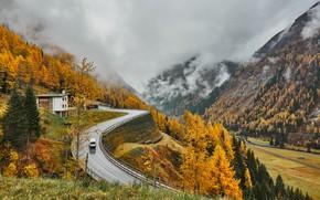 Picture road, autumn, mountains, Austria, Alps, Autumn, Mountains, Austria, Roads, Alps Fog Nature